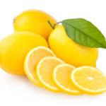 Limun  (Citrus x limon)